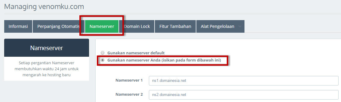 pointing domain ke hosting